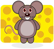 A smiling mouse on a background of cheese Royalty Free Stock Images