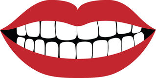 Smiling Mouth Royalty Free Stock Photos