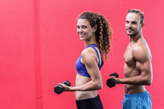 Smiling muscular couple lifting dumbbells Royalty Free Stock Photo