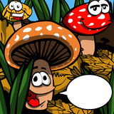 Smiling Mushrooms with speech bubble Stock Photos