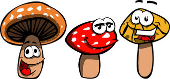 Smiling Mushrooms Royalty Free Stock Images