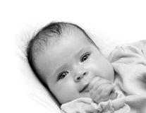 Smiling newborn baby girl Stock Photography