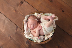 Smiling Newborn Girl Sleeping in a Wooden Bowl Royalty Free Stock Photos