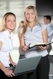 Smiling office workers Royalty Free Stock Photo