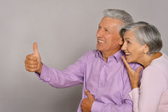 smiling old couple Royalty Free Stock Image