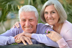 Smiling old couple with flower Royalty Free Stock Photography