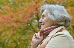 Smiling old woman Royalty Free Stock Photos