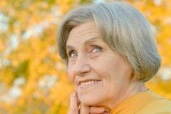 Smiling old woman royalty free stock image