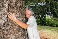 Smiling older woman hugging a tree Royalty Free Stock Photo