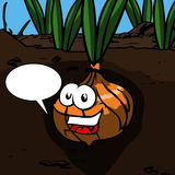Smiling Onion with speech bubble Royalty Free Stock Images