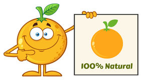 Smiling Orange Fruit Cartoon Mascot Character Pointing To A 100 Percent Natural Sign. Illustration Isolated On White Background royalty free illustration