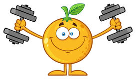 Smiling Orange Fruit Cartoon Mascot Character Working out with Dumbbells Stock Photos