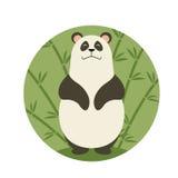 Smiling panda Stock Photos