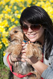 Smiling Pet Owner. A cute terrier mix breed pup being held by his owner posing in front of the Spring daffodil flowers stock photo