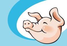 Smiling pig. Piggy head, cartoon vector illustration Royalty Free Stock Photo