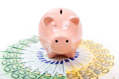 Smiling  Piggy bank with euro bills Stock Images