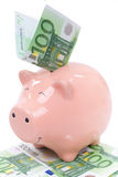 Smiling  Piggy bank with euro bills Stock Image