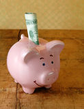 Smiling Piggy Bank with Money Stock Images