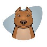 Smiling pitbull illustration Stock Images