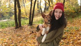 Smiling playful girl with dog on autumn day stock footage