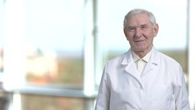 Smiling portrait of senior science specialist in white coat. Cheerful oldman staying at the right in blurred window background stock video footage