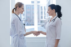 Smiling practitioners making acquaintance in the clinic. Happy to have new acquaintance . Delighted friendly communicative practitioners standing in the clinic stock photography