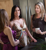 Smiling Pregnant Lady with Friends Royalty Free Stock Image