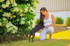 Smiling pregnant woman with a big belly plays with her dog in the garden stock image