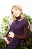 Smiling pregnant woman at home stock image