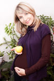 Smiling pregnant woman with yellow apple stock images