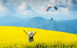 Smiling pretty girl  in blooming yellow field with hands up. royalty free stock image