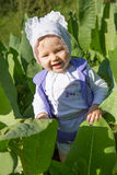 Smiling pretty little child girl in leaves of burdock. In park Royalty Free Stock Photography