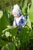 Smiling pretty little child girl in leaves of burdock. In park Stock Photo