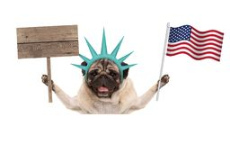 Smiling pug puppy dog holding up American flag and blank wooden sign, wearing lady Liberty crown. Isolated on white background Royalty Free Stock Photo