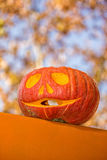 Smiling pumpkin Stock Image