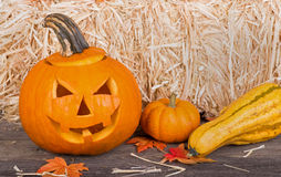 Smiling Pumpkin Stock Image