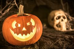 Smiling pumpkin and human skull Stock Photography