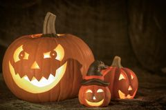 Smiling pumpkins for halloween Royalty Free Stock Image