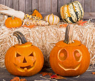 Smiling Pumpkins Stock Image