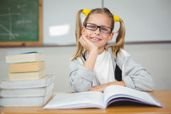 Smiling pupil sitting at her desk in a classroom Stock Photos