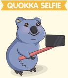 Smiling quokka animal making selfie photo Royalty Free Stock Photo