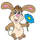 Smiling rabbit with flower. Vector illustration Stock Images
