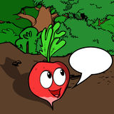 Smiling Radish with speech bubble Royalty Free Stock Photo