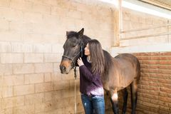 Companionship Of Human And Horse. Smiling rancher looking at brown equine standing in stable stock photo