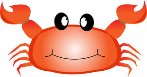 Smiling red sea crab with claws. Stock Photo