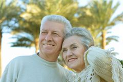 Smiling retired couple. On palm leaves background Royalty Free Stock Images