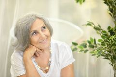 Smiling retired woman Royalty Free Stock Photography