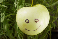Smiling and ripe apple Stock Images