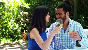 Smiling romantic couple toasting wine glasses stock video