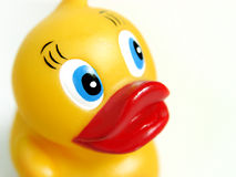 Smiling Rubber Duck Stock Image